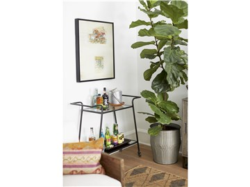 Thumbnail Bar Cart