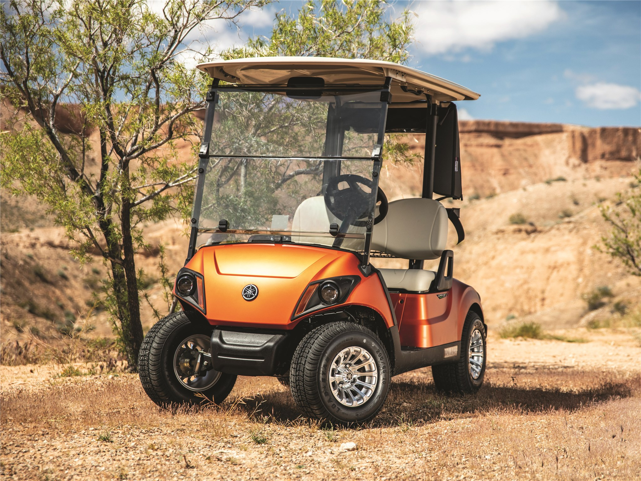 The 10 Best Golf Carts On The Market In 2020