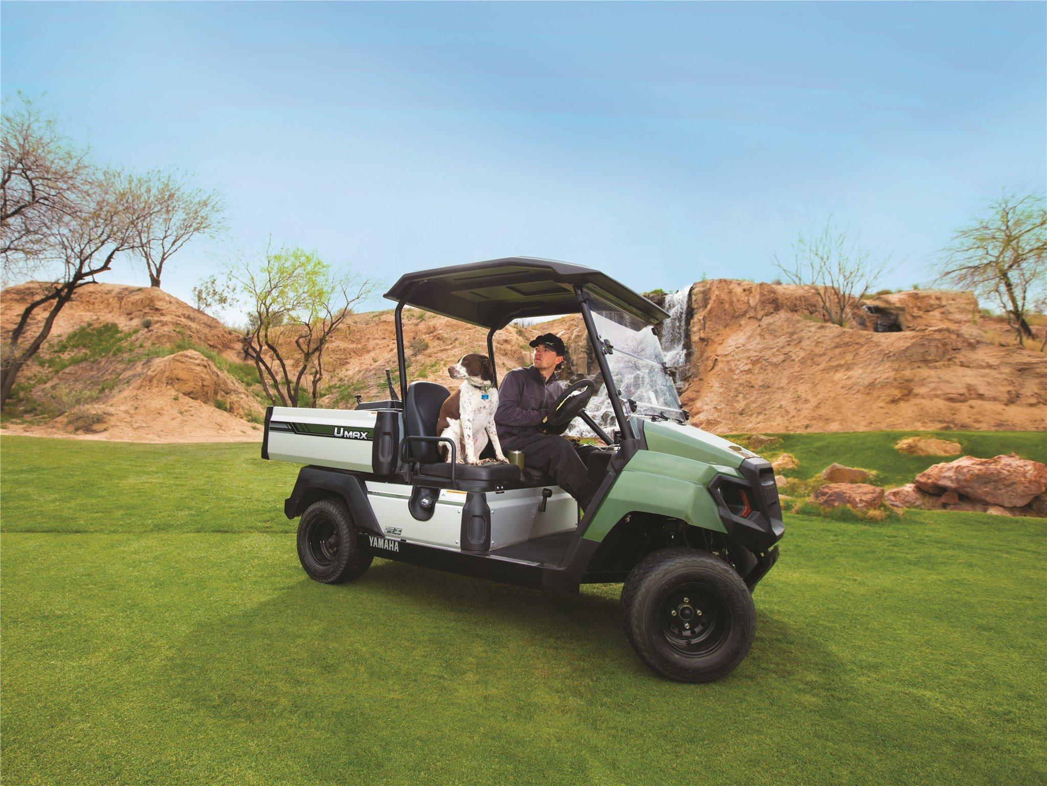 Golf Umax One Yamaha Golf Car