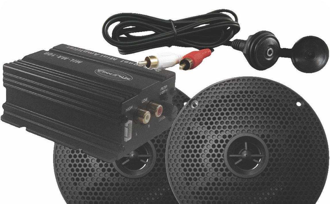 MA100 Speaker/Amp Package by Millennia